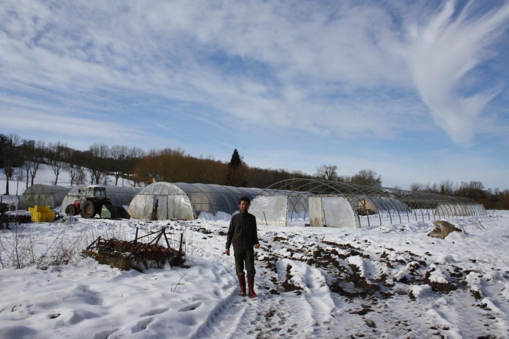 janvier 2018 - maraîchage et serres 033.JPG